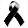 Adhex condena asesinato de Sofía Tato